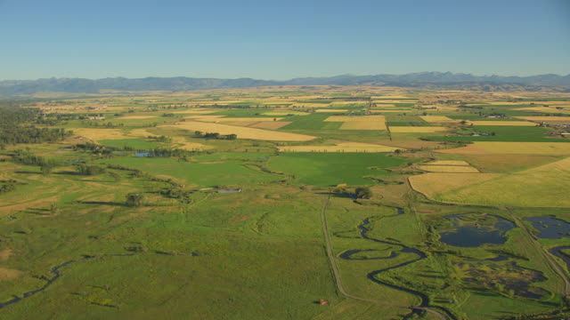 vidéos et rushes de ws aerial view over rivers and wheat fields in gallatin county / montana, united states - patchwork landscape