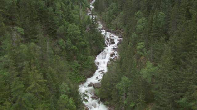 vídeos de stock, filmes e b-roll de ms aerial ts view over skagway river traveling north / alaska, united states - skagway