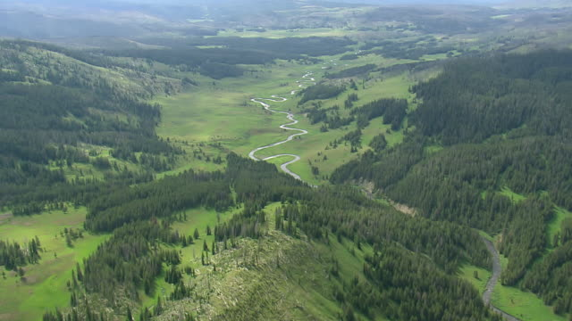 ws aerial view over snake river and landscape with denes forest / wyoming, united states - river snake stock videos & royalty-free footage