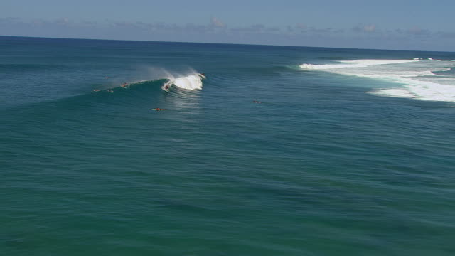 ws zi ts aerial view over surfer catching large wave banzai pipeline surfing spot on island of oahu / pupukea, hawaii, united states - pipeline wave stock videos and b-roll footage