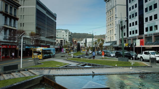 view over te aro fountain, wellington - medium group of animals stock videos & royalty-free footage