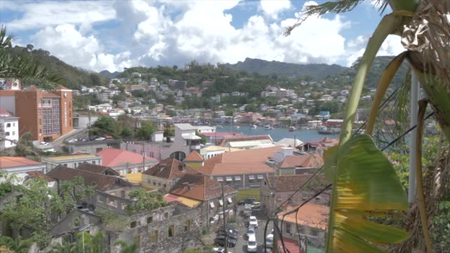 view over the carenage (the old harbour), st. george's, grenada, windward islands, west indies, caribbean, central america - st. george's grenada stock videos and b-roll footage