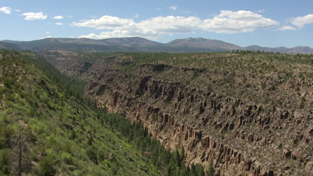 ws aerial td view over tree tops at bandelier national monument / new mexico, united states - bandelier national monument stock videos & royalty-free footage