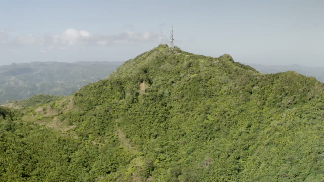 ws tu aerial pov view over trees on top of mountain peak, radio tower in distance / jayuya, puerto rico, united states  - peak tower stock videos and b-roll footage