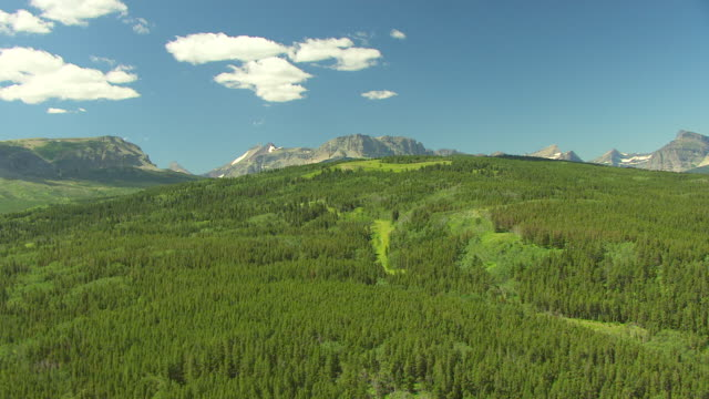 ws aerial view over trees toward lake sherburne in glacier national park / montana, united states - us glacier national park stock videos & royalty-free footage