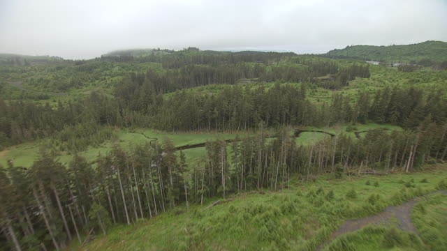 WS AERIAL ZI View over wild green Kodiak Island / Alaska, United States