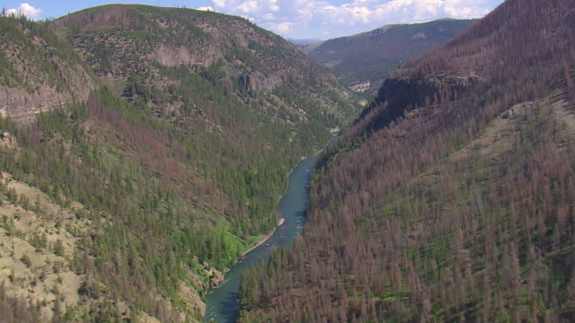 ws aerial ts view over yellowstone river flowing from dense mountains hill / wyoming, united states - river yellowstone stock videos & royalty-free footage