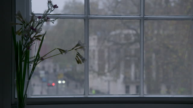 view through a sash window in london - sash window stock videos and b-roll footage