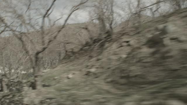 vídeos y material grabado en eventos de stock de viewpoint from a moving vehicle - bare tree