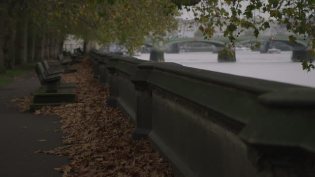 views along the embankment in autumn, london - riverbank stock videos & royalty-free footage