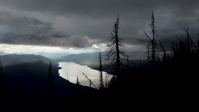 views from the mount brown lookout trail above lake mcdonald300 feet below through the skeletal remains of the 2017 sprague creek fire in glacier... - glacier national park us stock videos and b-roll footage
