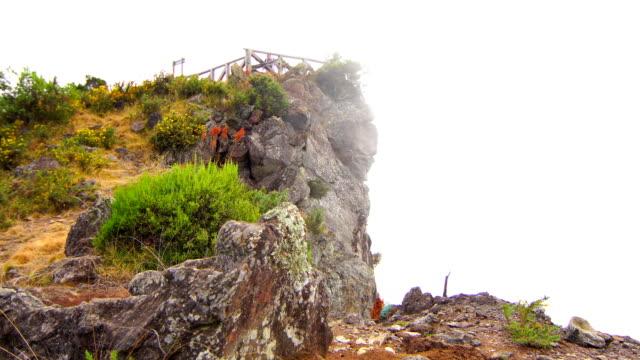 マイド山 - レユニオン島の景色 - 熱帯の低木点の映像素材/bロール