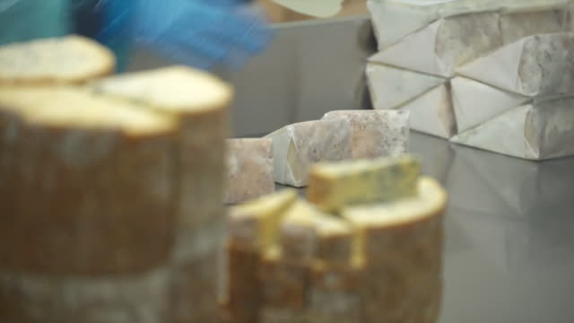 views inside a cheesemaking factory - große personengruppe stock-videos und b-roll-filmmaterial