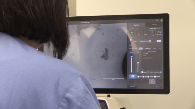 views inside a coronavirus research laboratory - scientific experiment stock videos & royalty-free footage
