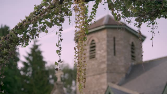 vidéos et rushes de views of a church tower obscured by greenery - clocher élément architectural