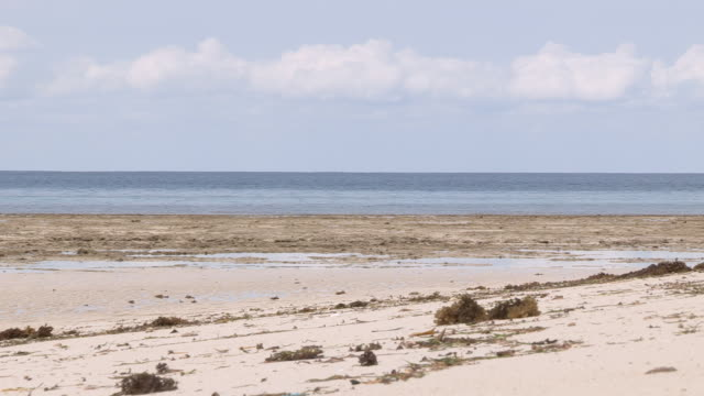 views of a deserted beach on an island - zanzibar archipelago stock videos & royalty-free footage