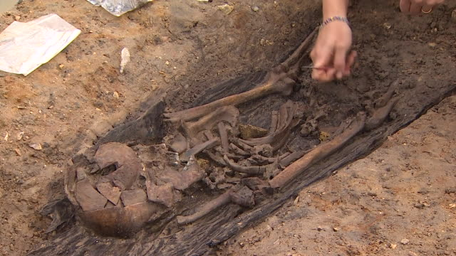 views of bodies excavated from a saxon burial ground in norfolk - human bone stock videos & royalty-free footage