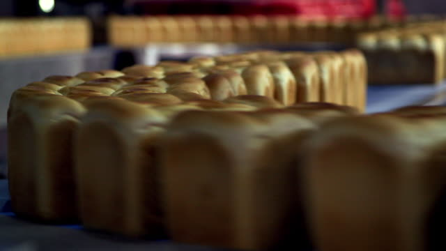 stockvideo's en b-roll-footage met views of bread loaves moving along a production line in a factory - broodje voedsel