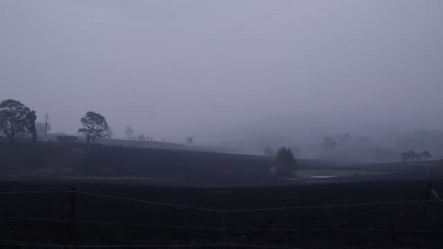 """views of charred farmland after intense bush fires in cobargo, new south wales - """"bbc news"""" stock videos & royalty-free footage"""