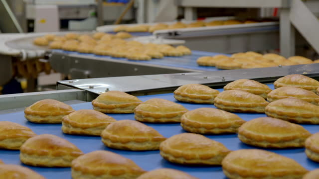 views of cornish pasties on conveyor belts in a factory - moulding a shape stock videos & royalty-free footage