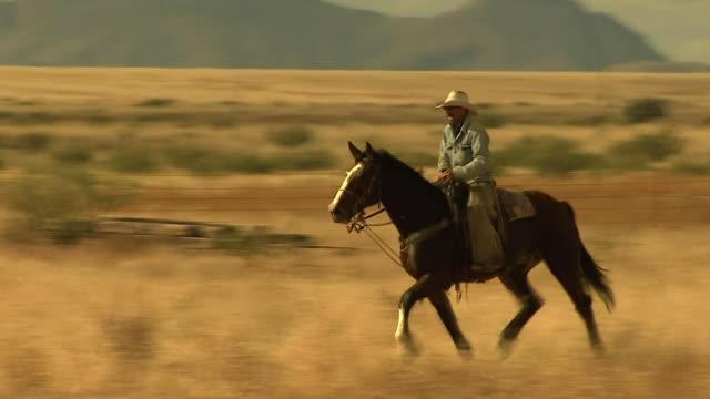stockvideo's en b-roll-footage met nnpw478y abra943d - cowboy