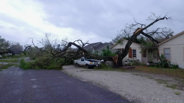 Views of destruction and a collapsed tree caused by Hurricane Harvey in Texas