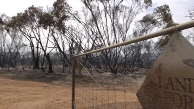 "views of destruction on kangaroo island after intense bush fires - ""bbc news"" stock videos & royalty-free footage"