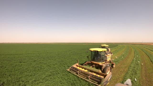 Views of farming in a field in Khartoum Sudan