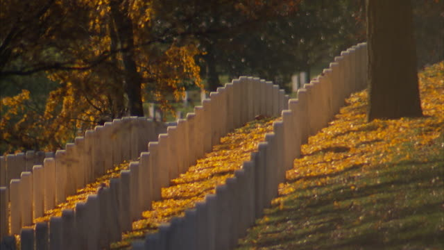 Views of graves and headstones at Arlington National Cemetery