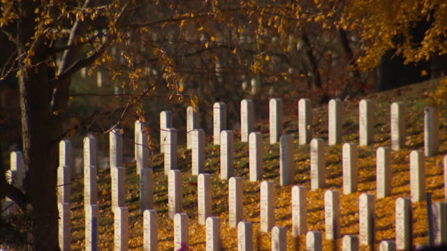 vidéos et rushes de views of gravestones in autumn at arlington national cemetery - pierre tombale