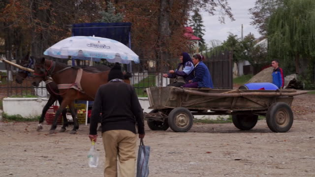 stockvideo's en b-roll-footage met views of horses and carts in nicoresti romania - paardenkar
