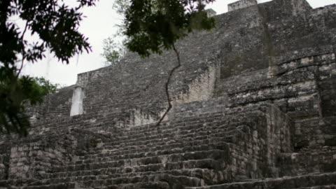 views of mayan ruins at calakmul, mexico - stone material stock videos & royalty-free footage
