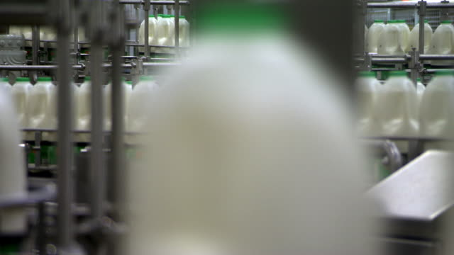 Views of milk bottles with green tops moving along a production line