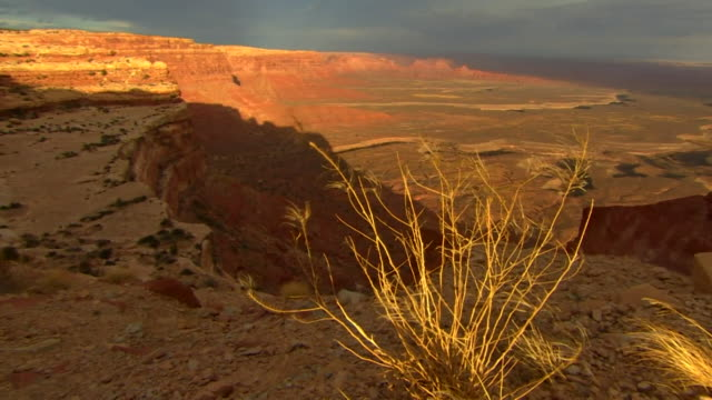 Views of the Bears Ears nature reserve in Utah USA