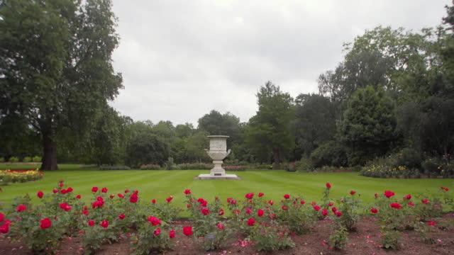 views of the buckingham palace garden - aquatic organism stock videos & royalty-free footage