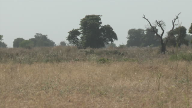 Views of the landscape and Nigerian soldiers in Chibok where 276 school girls were kidnapped by Boko Haram militants