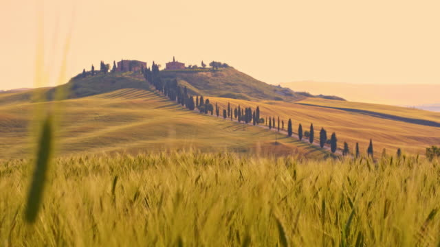ds villa in tuscan countryside - florence italy stock videos & royalty-free footage
