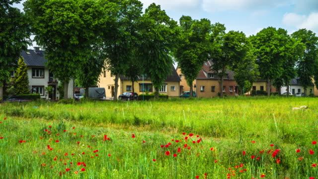 CRANE: Village at Springtime