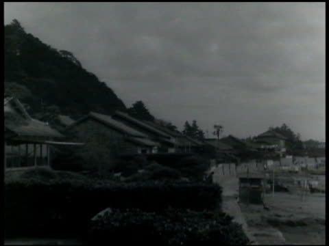 village houses in okitsu japan one cottage w/ japanese pine in front of window int cottage looking out window w/ view obscured by foliage - 1935 stock videos & royalty-free footage