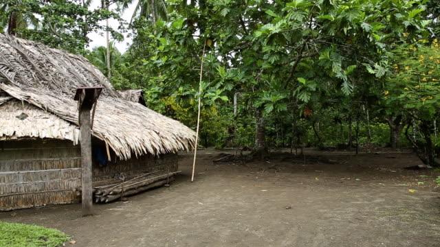 Village hut in Star Harbour_left pan