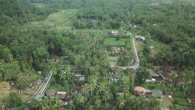 village in karangasem district / bali, indonesia - baumgruppe stock-videos und b-roll-filmmaterial