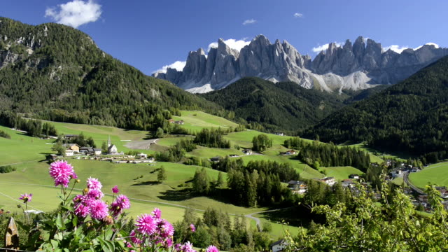 village in mountain valley with dahlia flower. - european alps stock videos & royalty-free footage