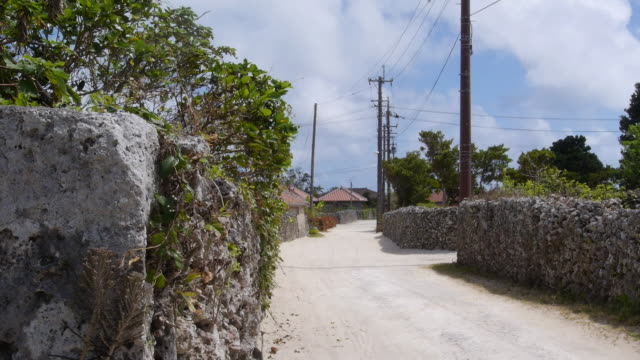 village in taketomi island, okinawa, japan - travel destinations点の映像素材/bロール