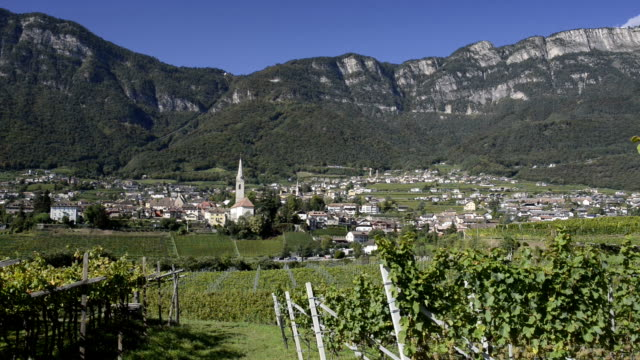 village in vineyard - rankenpflanze stock-videos und b-roll-filmmaterial