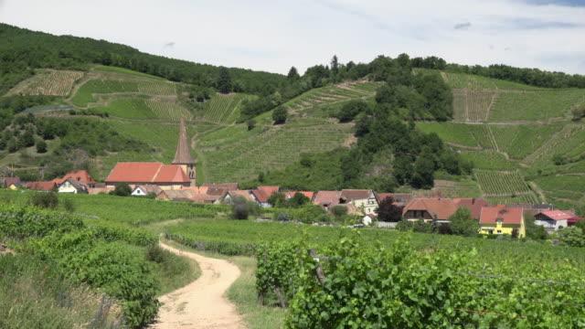 Village in vineyard