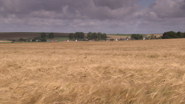 A village stands behind a field of wheat in the Somme region, Hauts-de-France.