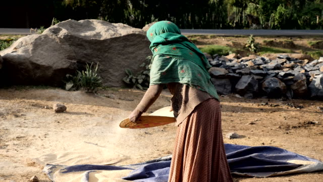 village tribal women sifting grain in rural countryside - horn of africa stock videos & royalty-free footage