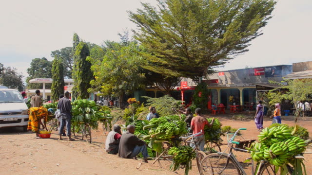 ms village with and bananas for sale to tourists / mosquito village, tanzania - selling stock videos & royalty-free footage