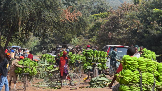 MS Village with and bananas for sale to tourists / Mosquito Village, Tanzania