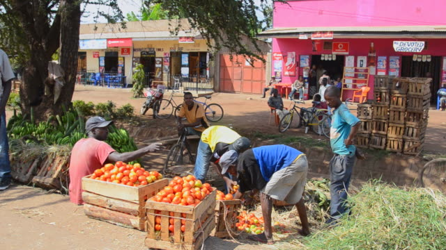 ms village with fruit and bananas for sale to tourists / mosquito village, tanzania - 売る点の映像素材/bロール